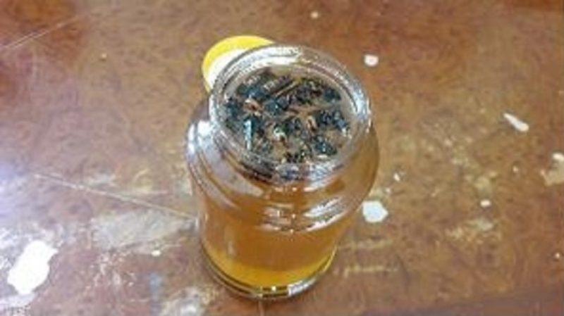 '말벌 꿀' 잘못 섭취하면…생명까지 위협